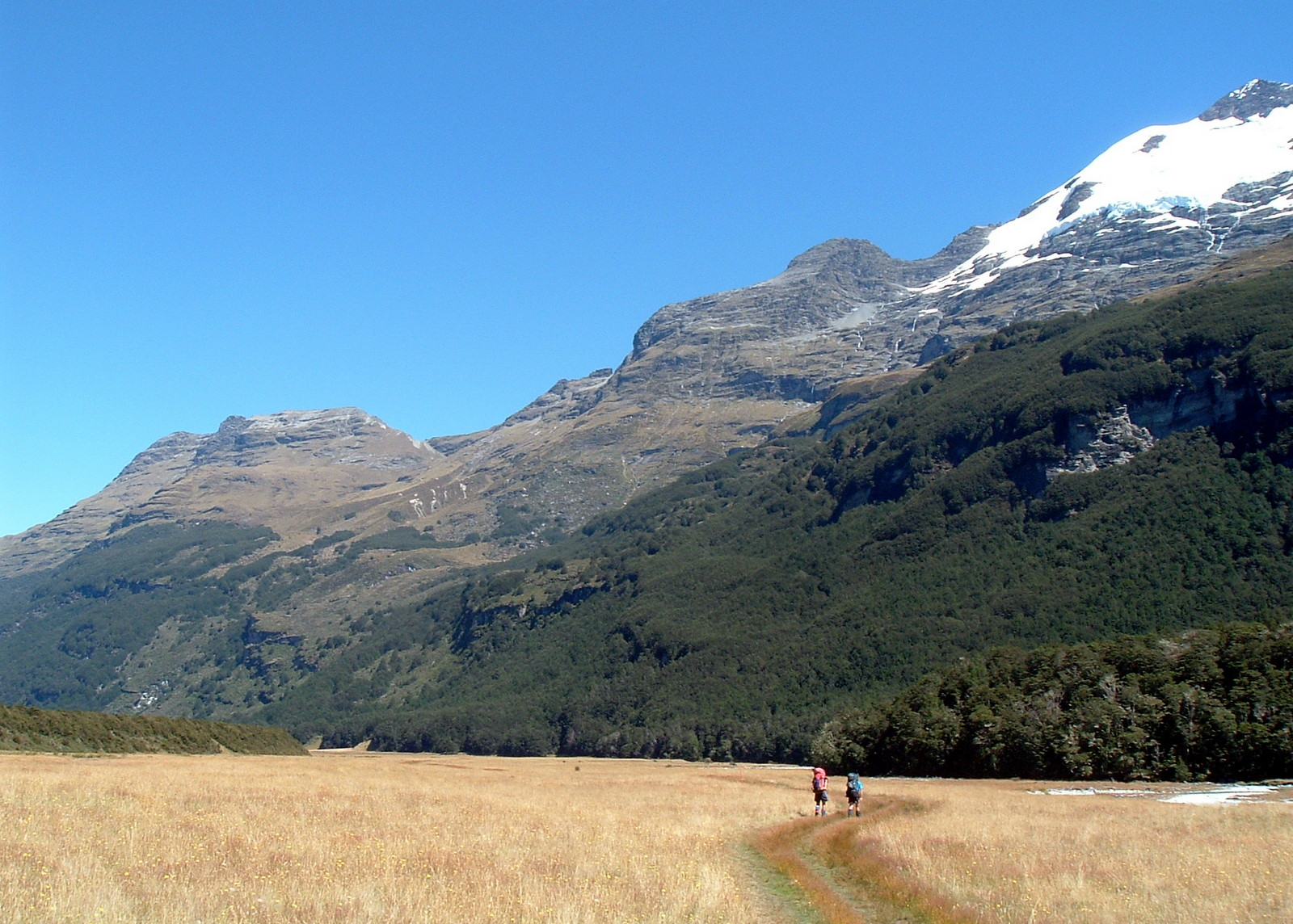 A sundrenched Rees Valley