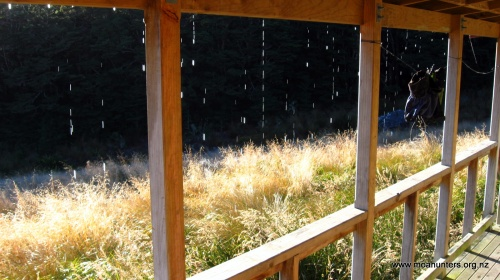 Frost melt drips off the roof of Speargrass hut