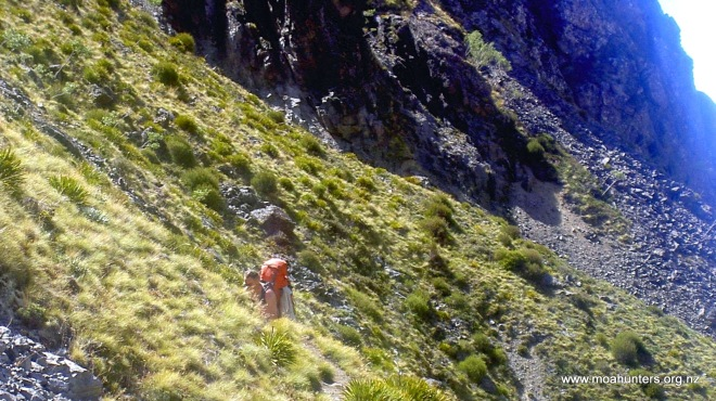 Ascending through rock and low tussock