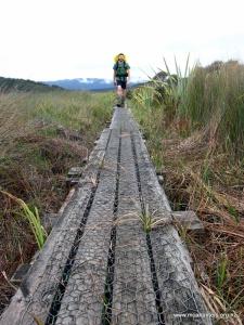 Boardwalks make travel over boggy terrain very easy