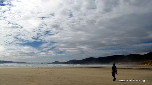 From the sky to the sand, everything is spectacular at Mason Bay