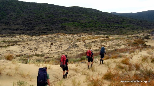 Adding Moa Men footprints to the kiwi, possum and deer tracks we spotted on the dunes...