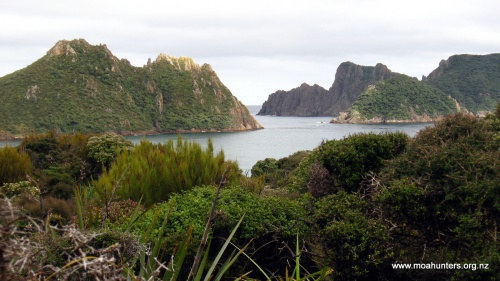 Steep sided granite islands rise sharply from the sea just off the coast