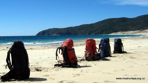 Backpacks sunning themselves on pristine Smokey beach
