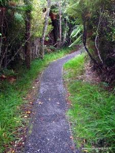 Boardwalks lead to Port William Hut