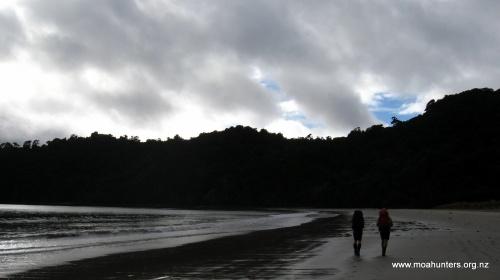 Dusky skies above Maori beach