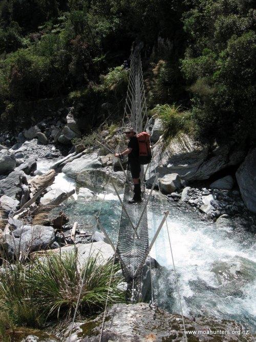 Magnus hovering above Vincent creek
